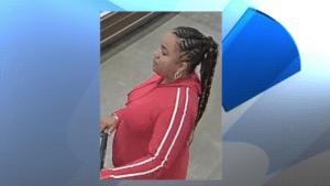 Santa Barbara theft suspect