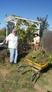 Volunteers work to beautify the community gardens Saturday. (Courtesy photo)