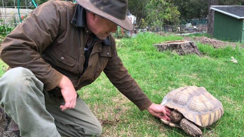 Arroyo Grande Turtle and Tortoise Sanctuary welcoming new