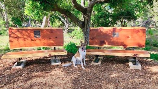 Memorial benches in Montecito for Saywer and Morgan Corey. (Photo: Santa Barbara Bucket Brigade/Facebook)