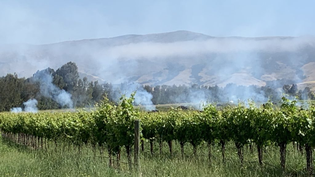 Smoke from an ag burn in San Luis Obispo Wednesday morning. KSBY photo